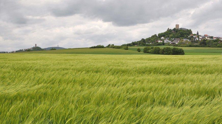 Gleiberger Land